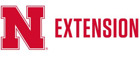 N Extension